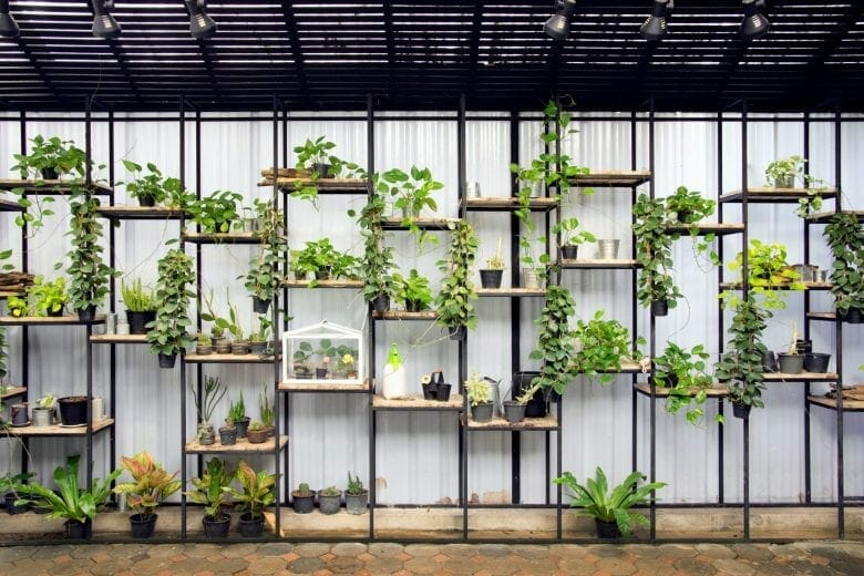 Creating an Eco-Friendly Coworking Space